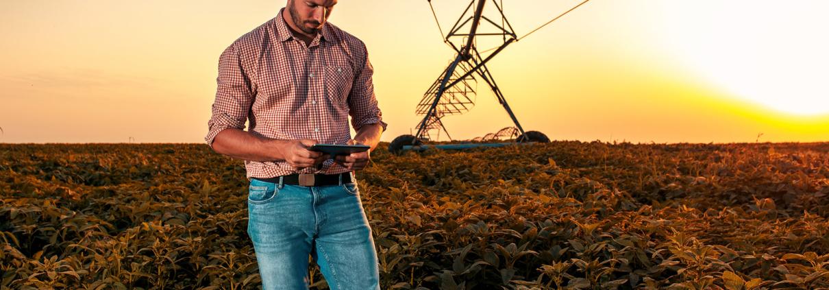 Exellios Smart Irrigation Riego IoT Exellios